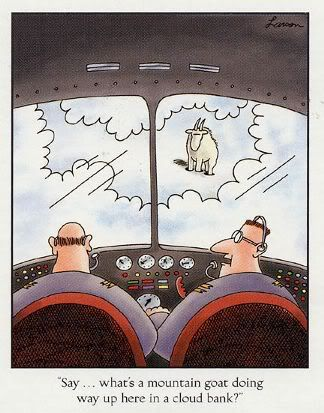 """what's a mountain goat doing way up here in a cloud bank?"""" (Gary Larson, The Far Side) Far Side Cartoons, Far Side Comics, Funny Cartoons, Funny Comics, Political Cartoons, The Far Side, Gary Larson Cartoons, You Funny, Haha Funny"""