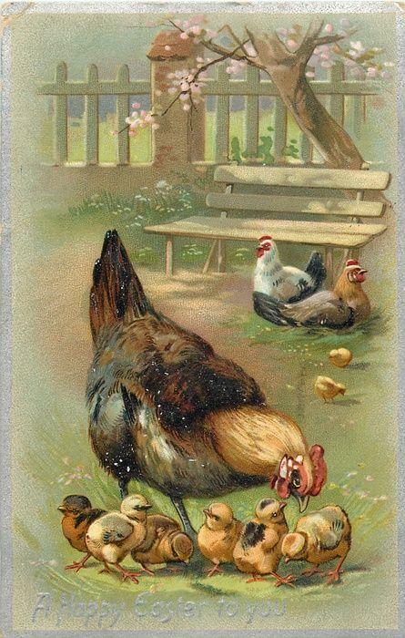 джон классический старые открытки утки очень хорошее, страницы