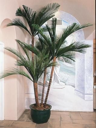 Caribbean Palm Preserved Foliage Artificial Plant Fake Plants Design Systems New