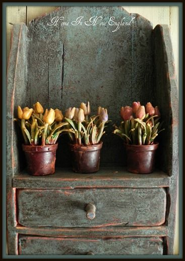 tulip pots on a primitive shelf <3