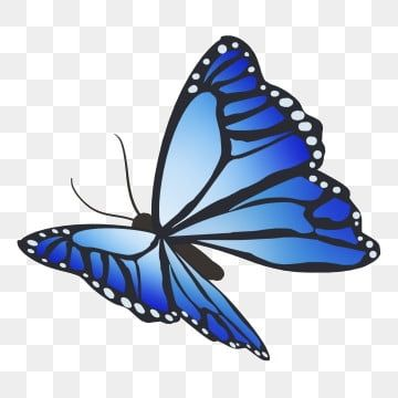 Blue Butterfly Illustration Butterfly Clipart Blue Butterfly Png Transparent Clipart Image And Psd File For Free Download Butterfly Illustration Butterfly Background Butterfly Watercolor