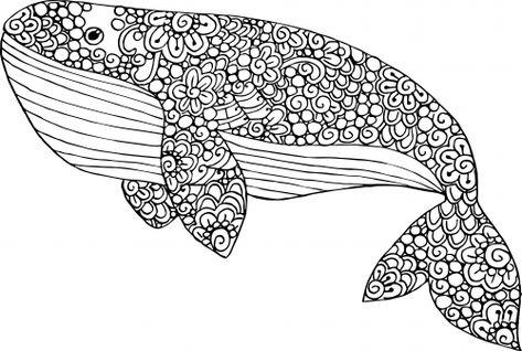 Blue Whale Coloring Page Mandalas Animales Libro De Colores Y