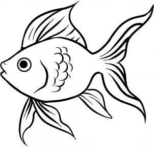 Six Easy Steps To Drawing Your Very Own Goldfish Arte De Peces Peces De Colores Dibujos Faciles