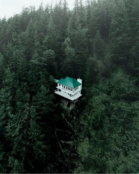 30+ Unbelievable Treehouses That Are Better Than Your Dream House #dreamhouse #dreamhousedesign #dreamhouseideas – c45ualwork999.org