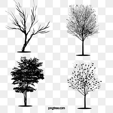 Black Trees Tree Silhouette Black Trees Png Transparent Clipart Image And Psd File For Free Download In 2021 Tree Photoshop Black Tree Watercolor Christmas Tree