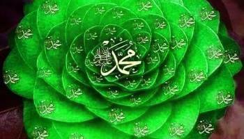 الحزب الكبير النقشبندي كنوز الأسرار في الصلاة والسلام علي النبي المختار Plant Leaves Islamic Love Quotes Flowers