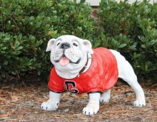 Georgia Bulldogs Uga Painted Mascot Statue Bulldog Statue