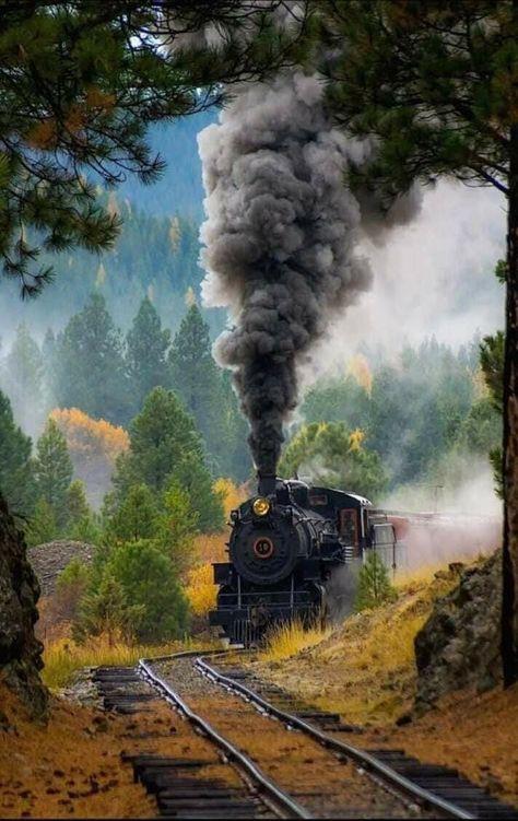 Pin De Roberto Carlos Da Silva Em Vou Fazer 2 Trens Velhos