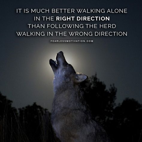20 Motivational Wolf Quotes To Pump You Up Wolf Pack Quotes, Wolf Qoutes, Lone Wolf Quotes, Fearless Quotes, Strong Quotes, Positive Quotes, Attitude Quotes, Positive Thoughts, Spiritual Quotes