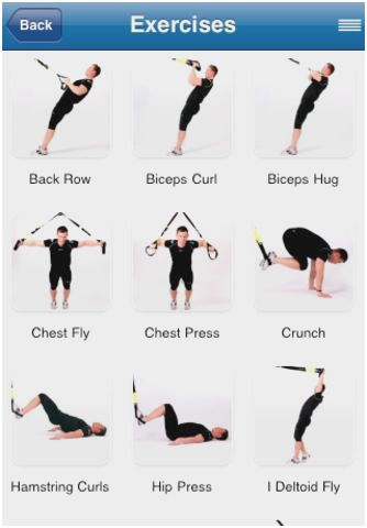 Trx Exercises Pdf : exercises, Exercises, Chart, Suspension, Training, Workouts, Workouts,, Routine