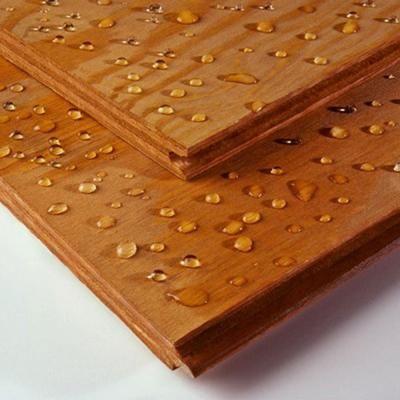 Subfloor Plywood Home Depot - Walesfootprint.org ...
