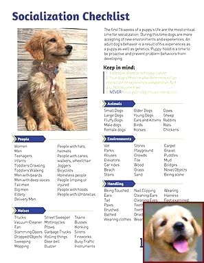 Dog Behavior Training Cost And Dog Behavior Changes After Moving