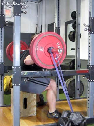 Box Squat with Bands - Seated Position | Westside Barbell