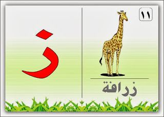 نقدم لكم بطاقات حروف الهجاء تعليم وتثقيف الاطفال مجلة ال Arabic Alphabet Letters Alphabet Flashcards Learning Arabic