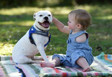 Ce Bébé Et Son Chien Sont Handicapés Leur Relation Est