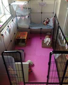 Rabbit Life Hacks Ten Useful And Easy Life Hacks For Bunny Owners Indoor Rabbit Diy Bunny Cage Diy Rabbit Cage
