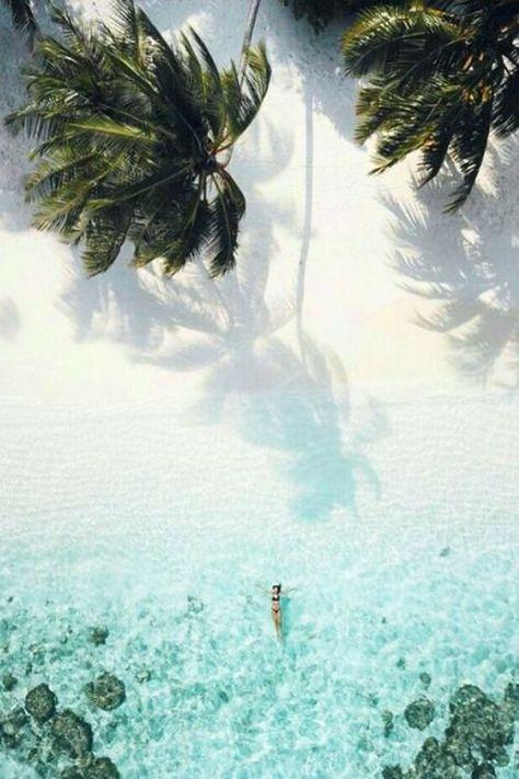 "#oceancuresall #tropical #untmd #bloguntmd: ""oceancuresall tropical blog """