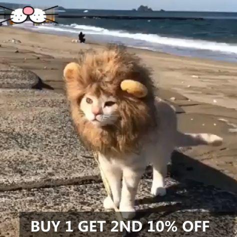 Cat Lion Head Pet Funny Headgear(BUY 1 GET 2ND 10% OFF)