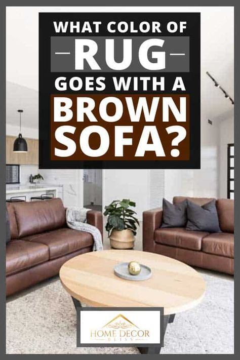 What Color of Rug Goes With a Brown Sofa? in 2020 | Brown