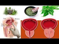 como tratar la prostatitis con suplementos naturales