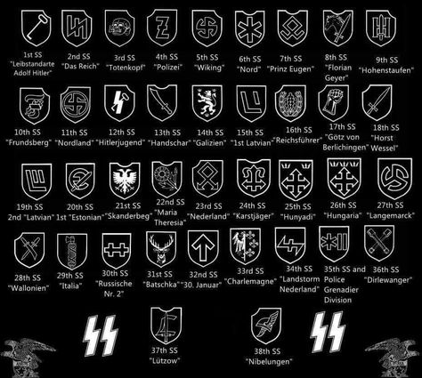 Waffen Ss Divisional Insignia And Variants 1 1 Ss Panzer Division