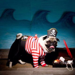 Pugeyes the sailor man Whood Whooood!!