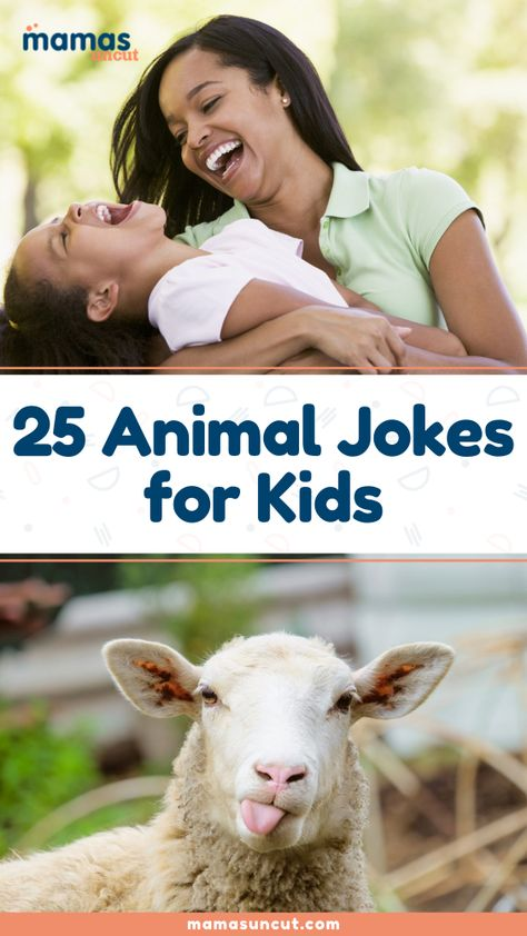 Are you looking for some harmless animal jokes for kids? Check out these 25 funny jokes about our furry friends!