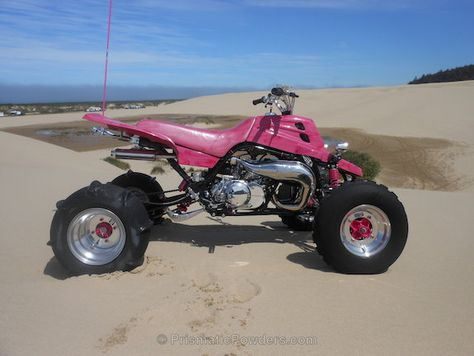 Pin By Darcey Stanley On Banshees Ridin Mud 3 Passion Pink
