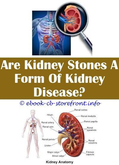 How Does Kidney Disease Cause Itching Diabetes Kidney Disease Guidelines How Does Ki In 2020 Chronic Kidney Disease Diet Chronic Kidney Disease Kidney Disease Recipes