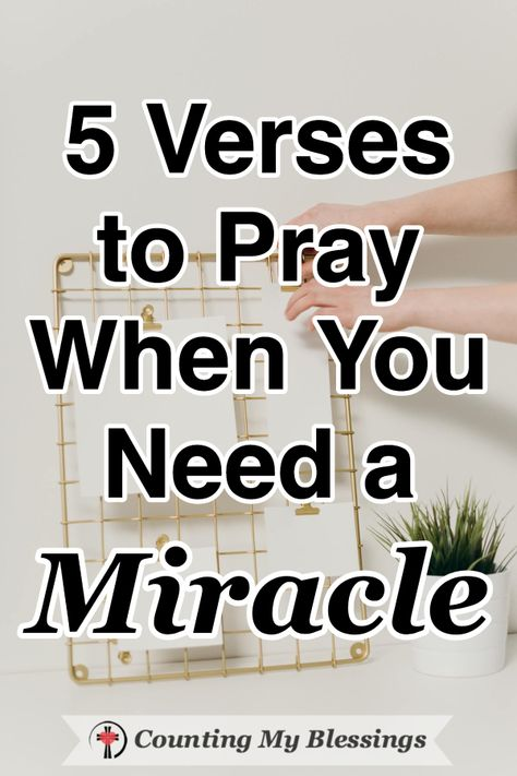 We receive so many prayer requests from people who need a miracle. If you are someone who needs God to do the impossible, these verses and prayers will help you go to God and ask for help. #Prayer #Faith #Needamiracle #Hope #BibleStudy #SeekGodFirst #WWGGG #CountingmyBlessings
