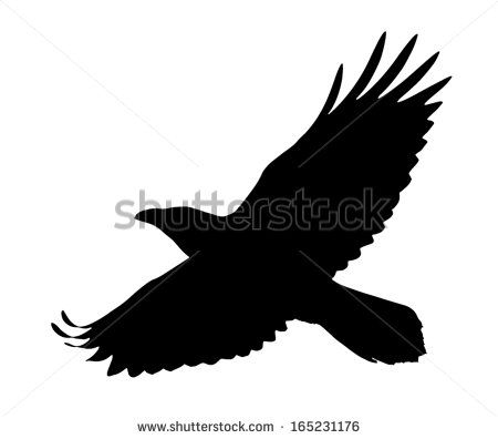 Vector Silhouette Of The Raven In Flight Raven Flying Crow Silhouette Raven Tattoo