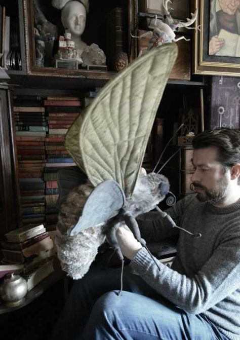 Post with 242 votes and 1750 views. The amazing textile art of U. based artist Mister Finch - Animals, mushrooms, and large scale insects made with upholstery fabric and cloth Mr Finch, Mister Finch, Toy Art, 3d Fantasy, Insect Art, Textile Artists, Soft Sculpture, Fabric Art, Fabric Birds