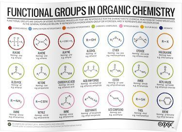 Functional Groups in Organic Chemistry Posters