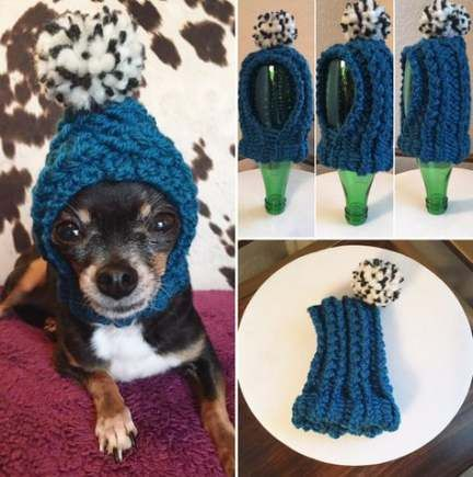 Diy Dog Clothes Beanie 61 Ideas Dog Clothes Diy Dog Beanie Diy Dog Stuff