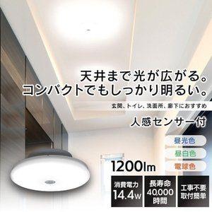 小型シーリングライト 人感センサー シーリングライト Led 小型 玄関