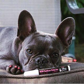 French Bulldog News And Nail Polish Love My Nails Http Amzn To