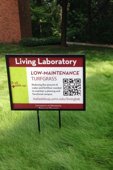 County Blogs Community Stearns County Minnesota New Guidelines For Lawn Care Lawn Care Lawn Lawn And Garden