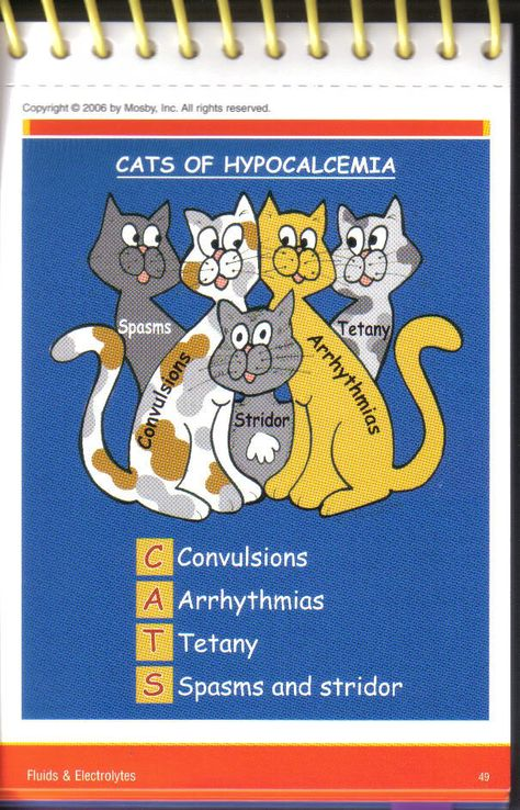 hypokalemia CATS image by PikevilleCollegeNursing - Photobucket