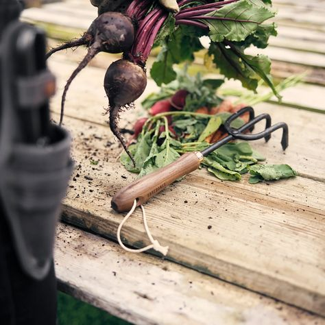 Cultivator Hand Tool