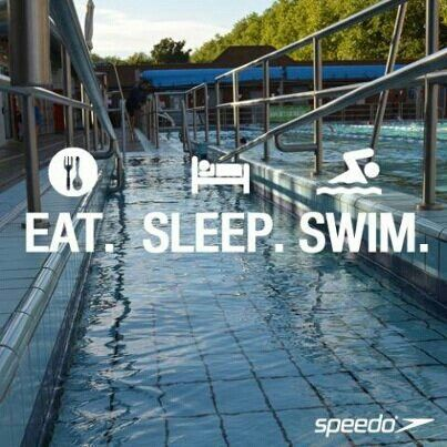 Swim quotes... This really is my life isn't it... What has swimming done to me!?!