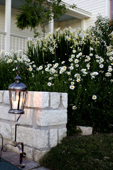 A flower bed on the back patio of Whitehall Center