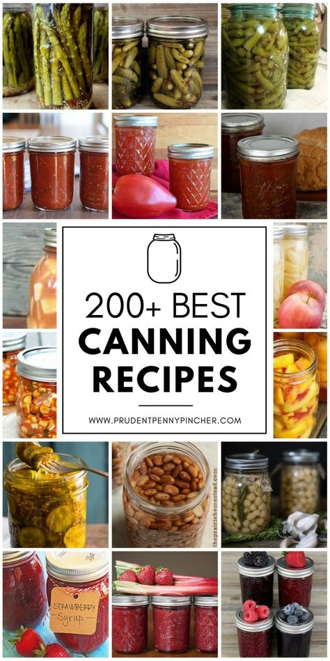 Canning food preservation - 200 Best Canning Recipes – Canning food preservation Home Canning Recipes, Canning Tips, Jam Recipes, Cooker Recipes, Pressure Canning Recipes, Garden Canning Ideas, Cheap Recipes, Jelly Recipes, Water Recipes