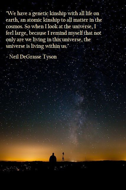 Earthsic Degrasse Universe Genetic Kinship Because Remind Within Living Cosmos Atomic Myself Matter Large Ty Universe Neil Degrasse Tyson Quotes