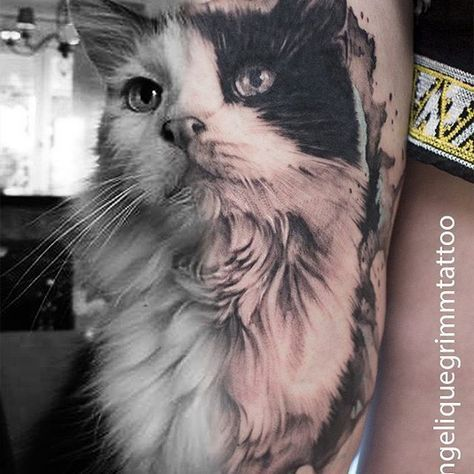 Login Realistic Cat Tattoo Allergictocats Catcat Cattattoo Catwallpaper Ca In 2020 Tattoos Katze Schwarze Katze Tatowierungen Agyptische Katzen Tattoos