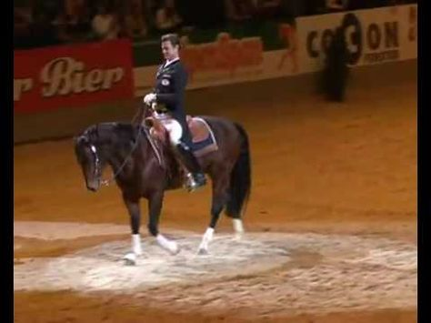 Reining vs. Dressage (Brittney this is the video I was telling you about)