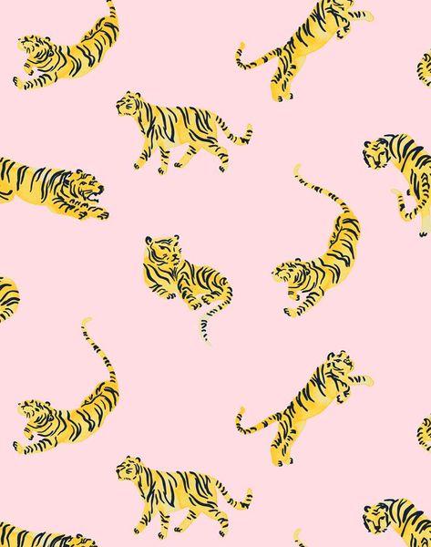 'Tigers' Wallpaper by Tea Collection - Ballet Slipper - Wallpaper Roll - Sample