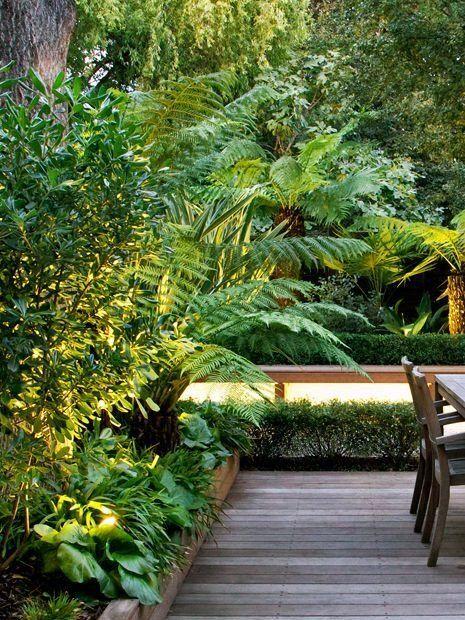 Tropical Garden Minimalist Tropical Garden Design Uk Jajlindulu Tropical Garden Design Modern Garden Design Tropical Garden