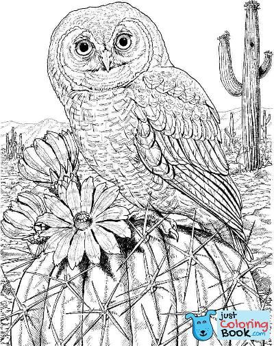 Free Printable Owl And Blooming Tree Coloring Pages Coruja Para