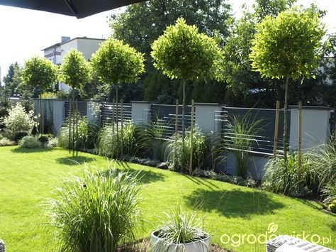 moderne Gartenarchitektur Düsseldorf - Hausgarten 1 - gartenplus - sitzecke im garten gestalten 70 essplatze