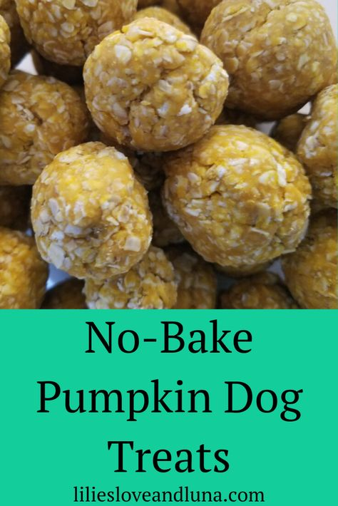 Easy Pumpkin Dog Treats - Easy no-bake pumpkin dog treat your dogs will love. No Bake Dog Treats, Soft Dog Treats, Frozen Dog Treats, Puppy Treats, Diy Dog Treats, Healthy Dog Treats, Chewy Dog Treats Recipe, Dog Biscuit Recipes, Dog Food Recipes